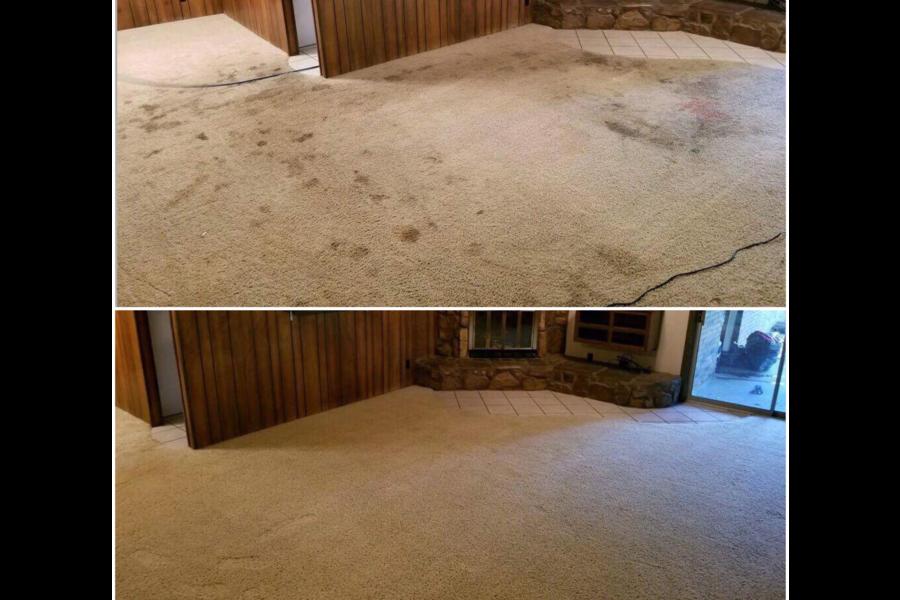 Carpet Deep Steam Cleaning & Deodorizing