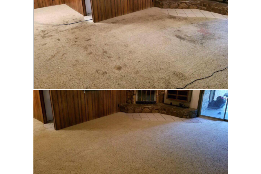 Carpet Deep Steam Cleaning & Deodorizing